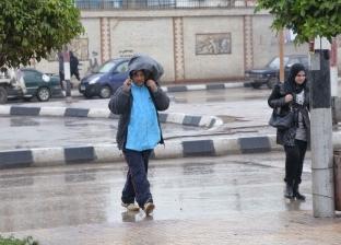 """هطول أمطار على محافظة الدقهلية.. و""""غرب المنصورة"""" يرفع درجة الاستعداد"""