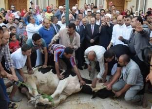 محافظ بني سويف يؤدي صلاة العيد ويشهد ذبح الأضحية