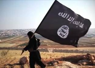 """وسائل إعلام: أسلحة أمريكية وسعودية وقعت في أيدي """"داعش"""""""