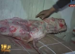 بالفيديو| رصد أول حالة لتزوير أختام اللحوم الجديدة في الإسماعيلية