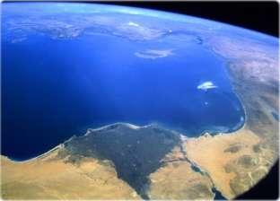 """""""البيئة"""": لم نرصد ظواهر غير طبيعية في ساحل البحر المتوسط عدا الأصداف"""