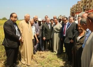 محافظ كفر الشيخ يستمع لشكاوي المزارعين.. ويشاركهم في حصاد الأرز