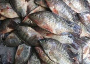 ضبط طن ونصف سمك فاسد في دمياط