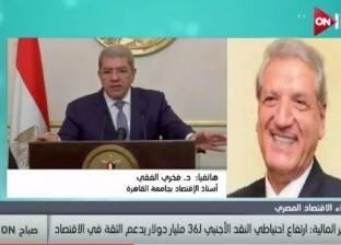 أستاذ اقتصاد: تحرير سعر الصرف شجع المؤسسات الدولية على الاستثمار بمصر