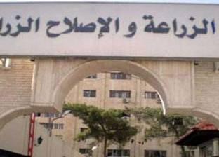 """""""التأديبية"""" تؤجل محاكمة مدير عام الحجر الزراعي بالسويس لـ7 مارس"""