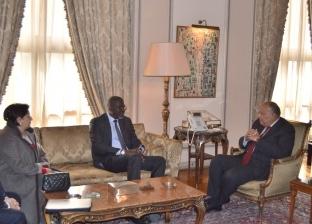 شكري يستقبل الأمين العام للاتحاد الدولي لجمعيات الصليب والهلال الأحمر