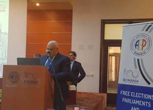 """""""لاشين"""" أمام مؤتمر دولي: إنشاء """"الوطنية للانتخابات"""" تتويجا للديمقراطية"""