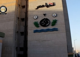 """مسئول بـ""""الوزراء"""": رئاسة مصر للاتحاد الإفريقي فرصة عودتنا للريادة"""