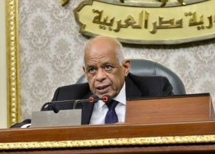 وزير الداخلية يهنئ عبدالعال بالذكرى 67 لثورة يوليو: حفظ الله مصر