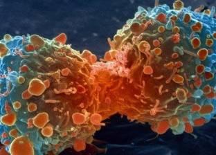 باحثون ألمان ينجحون في تجربة علاج مناعي جديد ضد السرطان