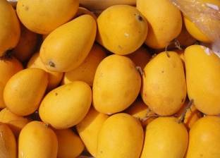 """ارتفاع أسعار الفاكهة """"وقفة"""" العيد.. والمانجو بـ22 جنيها"""