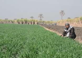 مشروع «التغيرات المناخية».. معركة مواجهة نقص المياه والإنتاج الزراعى