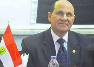 مستشار جامعة الدول العربية: الإعلام والفن لعبا دورا مهما في نصر أكتوبر