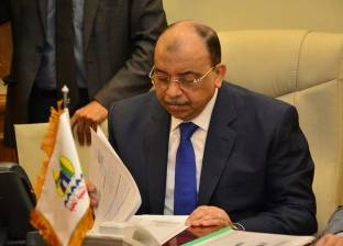 """""""شعراوي"""": محافظات الصعيد لم تأخذ حقها في التنمية لفترات طويلة"""