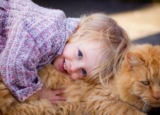 دراسة: القطط ليست أقل وفاء من الكلاب