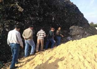 رئيس المحلة: وفد بيئي يزور الغربية لرفع إنتاجية مصنع تدوير القمامة