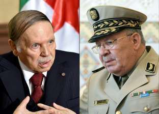 دستوريا.. ماذا سيحدث بعد استقالة بوتفليقة من رئاسة الجزائر؟