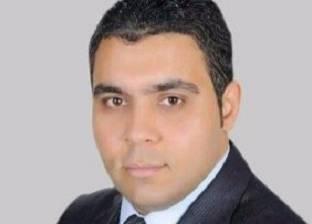 برلماني: المنظمات الحقوقية تدير حربا شرسة ضد مصر