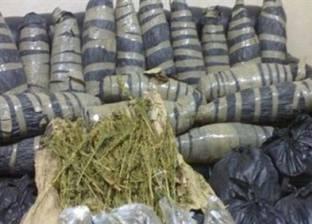 """""""مكافحة المخدرات"""" بالسويس تُحبط تهريب 300 كيلو بانجو"""