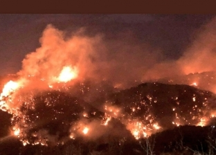 آخرها لبنان وسوريا.. 2019 عام أسود على الغابات بسبب الحرائق