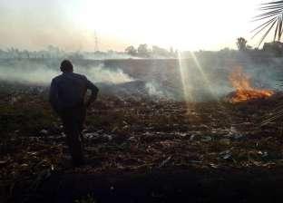 """""""البيئة"""" تشارك في حملة بالمساجد للتوعية بأضرار حرق المخلفات الزراعية"""