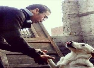 مدرب كلاب «بلدى»: «لما بتتمرن بتتباع بأسعار المستورد»