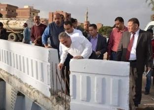 عثمان يتفقد أعمال التطوير بمداخل ومخارج الإسماعيلية استعدادا لافتتاحها