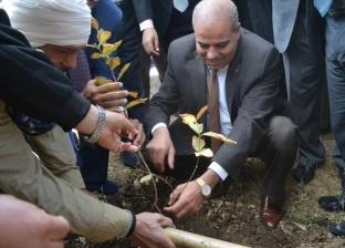 """1000 شجرة.. رئيس جامعة الأزهر يدشن مبادرة """"هنجملها"""" بفرع أسيوط"""
