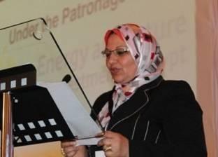 سيرة| صباح مشالي رئيسا لمجلس إدارة الشركة المصرية لنقل الكهرباء