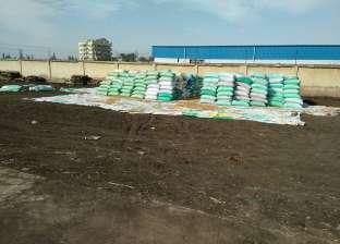 مديرية الزراعة بالإسكندرية تتسلم 490 طن قمح