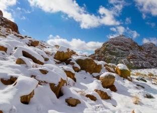 ارتفاعه 2500 متر ويكسوه الجليد شتاء.. 6 معلومات عن جبل اللوز