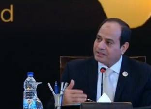السيسي يؤكد دعم الدولة الكامل لرجال الأعمال المصريين