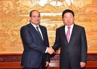 السيسي: مصر تهتم دوما بتعزيز التنسيق والتعاون بين الدول النامية