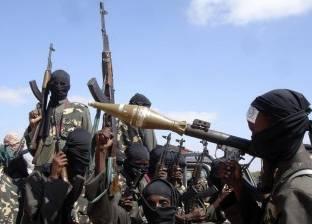 """وسائل إعلام: استسلام نحو 60 من """"بوكو حرام"""" شمال الكاميرون"""