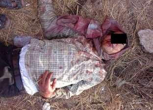 3 أشخاص يقتلون مسنا ويهشمون رأسه لخلاف على أرض زراعية في الدقهلية