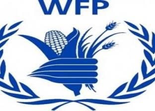 الغذاء العالمي: الأمطار تعزز إنتاج المحاصيل الزراعية في سوريا