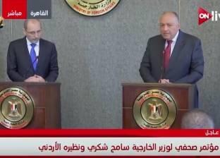 وزير الخارجية: انتخابات الرئاسية دفعت السعودية لتأجيل القمة العربية