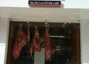 """""""الخدمات البيطرية"""": بدء استخدام الأختام الجديدة بالمجازر 14 يناير"""
