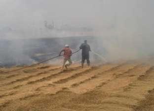 """""""البيئة"""": بداية فصل الخريف يصاحبها زيادة في الاحساس بآثار حرق """"قش الأرز"""""""
