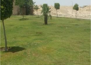 نائب محافظ القاهرة يطالب بالتركيز على أعمال التشجير والتجميل