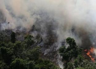"""""""حرائق مستمرة منذ 3 أسابيع في غابات الأمازون"""".. ماذا يجري في رئة العالم؟"""