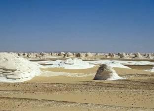 """""""الصحراء البيضاء"""".. متحف جيولوجيا وحفريات """"مصري"""" على مساحة 3 آلاف كيلو"""
