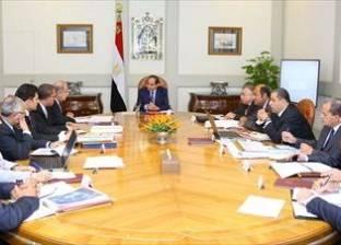 السيسي يوجه بترشيد الاستيراد من الخارج في اجتماعه برئيس الوزراء