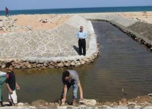 بالصور| رئيس مدينة أبورديس يتفقد المرحلة الأخيرة من تدبيش مجرى السيل
