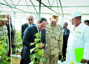 الهيئة العربية للتصنيع تحصل على الشهادة الدولية للممارسات الزراعية