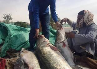 """رؤساء جمعيات الصيد بأسوان يعلنون دعمهم لـ""""السيسي"""""""