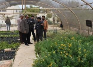 مصيلحي: تنمية وتأهيل 53 واديا وإنشاء 100 بئر لخدمة الزراعة في مطروح