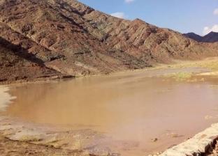 """""""الري"""": تنفيذ مشروعات بـ436 مليون لحماية البحر الأحمر من أخطار السيول"""
