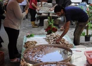 حملات لمقاطعة الأسماك فى المحافظات الساحلية: «خليها تعفن»