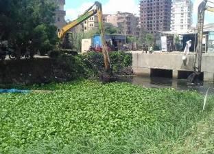 """تناقشه """"المصرية - السودانية"""" المشتركة.. خبراء يوضحون طرق مكافحة ورد النيل"""